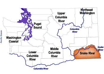 Snake River Salmon Recovery Region on yakima river washington map, appalachian mountains washington map, skagit river washington map, potholes wa map, washington state volcano map, columbia river washington map, blue mountains washington map, rock creek washington map, missouri river map, washington state rivers map, hells canyon map, hood canal washington map, coldwater lake washington map, okanogan river washington map, columbia plateau map, toutle river washington map, cascade river washington map, spokane river map, washougal river washington map, olympic range washington map,